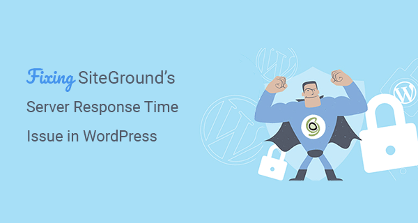 How I Fixed SiteGround Slow Server Response Time Issue?