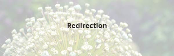 Redirection - WordPress plugin to redirect pages
