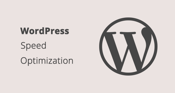 WordPress Speed Optimization